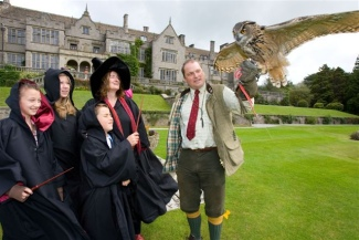 Harry Potter Falconry