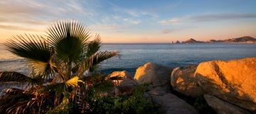 Olamar Cabo View
